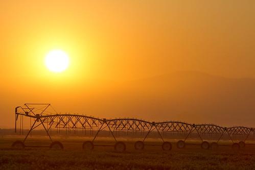 california county sunset farm glenn boom fields farms agriculture irrigation