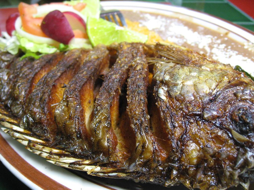 Mojarra frita a photo on flickriver for Proyecto de criadero de mojarras