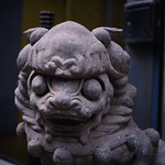 Stone Lion in Front of YungPoHin