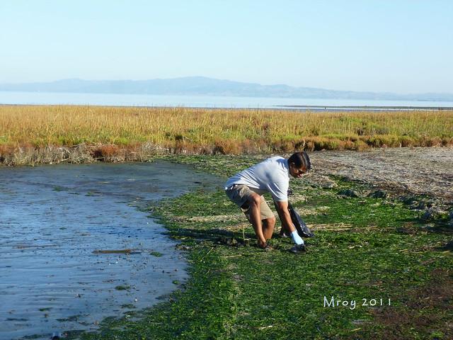coastal cleanup 033