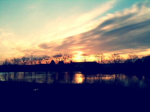 camera trees light sun reflection sunrise geese pond ducks iphone takeitfromme