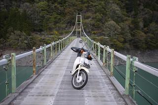 吊橋とカブ