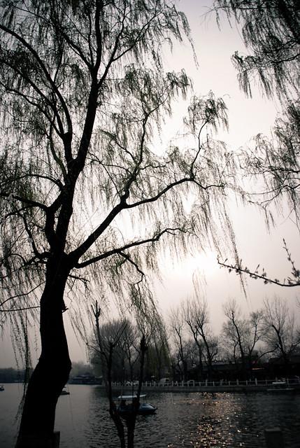 Liu Wei Beijing Travel Blog