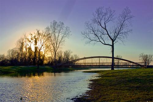 bridge webbcity kingjackpark