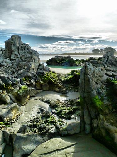 ocean sea newzealand christchurch seascape coast sand rocks pacific canterbury coastal nz southisland lowtide seashore clifton hdr southshore stevetaylor shagrock