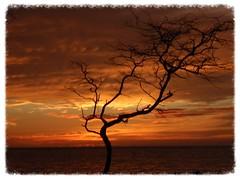 Hawaii Sunrises-Sunsets