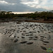 Hippo Pool at Dusk - Serengeti, Tanzania