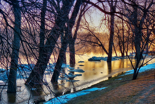 trees canada sunrise reflections lumix spring winnipeg manitoba redriver hdr intheyard elmpark tonemapped photoengine fz35 oloneo oloneophotoengine oloneophotoenginebeta