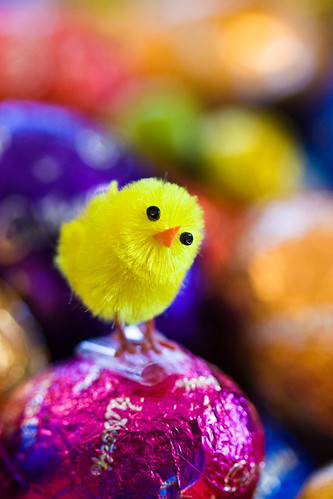 Easters Coming