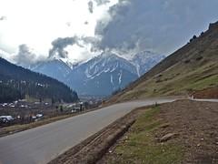 Splendor of Kashmir - Standard