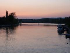 Rhine in pink