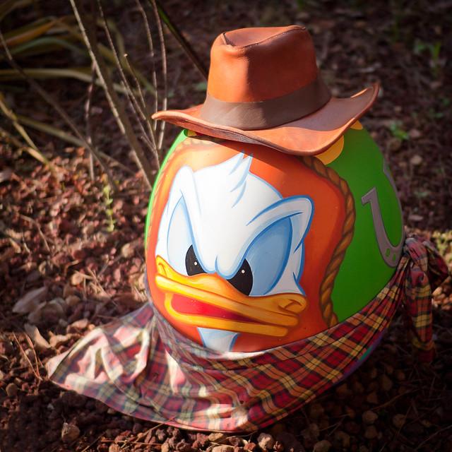 Duck Egg | Flickr - Photo Sharing!