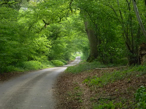 Road from Jane Austens House to Steventon Church