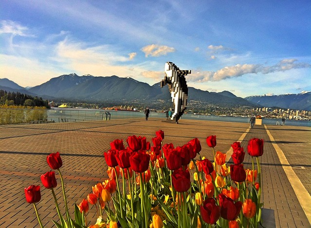 Electric Tulips and the Pixel Whale