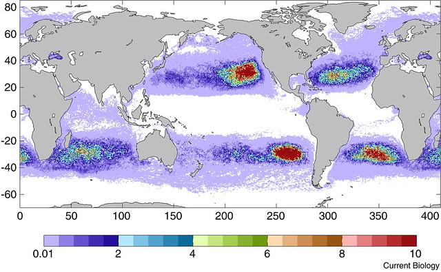 Plastic ocean Ma