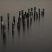 Old pier by crazyfruitbat