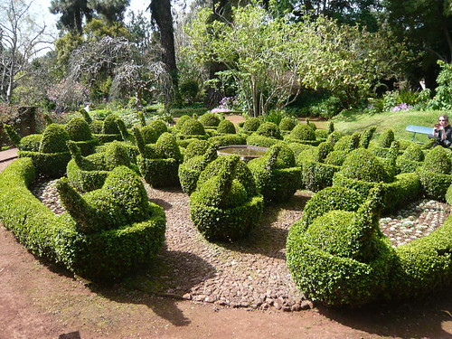 Topiary snails