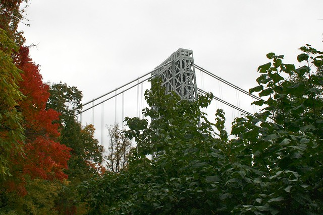 George Washington Bridge : Missing The Tower For The Trees