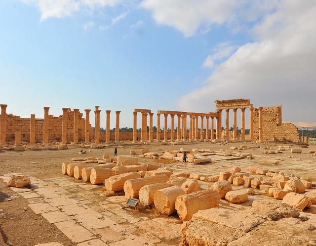 Syria, Palmyra, dic.2010 287