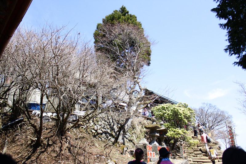 20110417_大山_0025