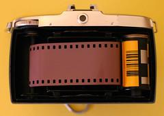 Redscale film load in a Bilora Bella