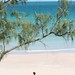 Small photo of Alone at last. Cable Beach, Broome, Oz