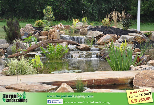 Ponds and Watergardens
