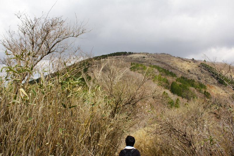20110429_塔ノ岳(表尾根)_0015