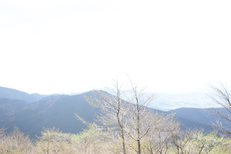 20110429_塔ノ岳(表尾根)_0011