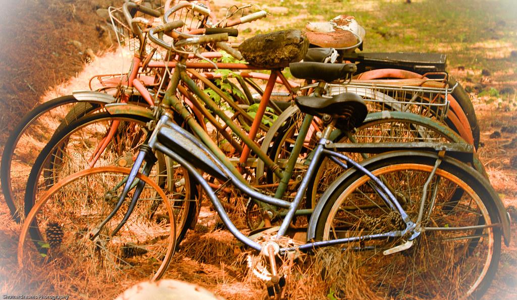 Bike Stand-1