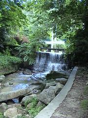 Penang Botanical Gardens (waterfall Garden)