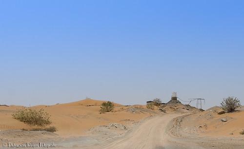 unitedarabemirates uae desert woestijn zand sand nature natuur sonyslta99 20mm sony20mmf28 zeisspolfilter landscape landschap