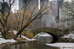 New York City - Feb. 18, 2011