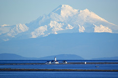 Dungeness NWR, Lighthouse and Mt Baker