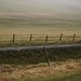 Fences by hilmarsigurpalsson