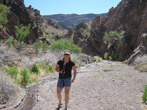 <p>A 20 minute walk up the canyon where we camped there was another hot spring, The stream at left disappeared before reaching the Colorado.</p>