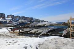 Greenlandic kayaks