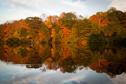 park autumn trees light sunset sky usa sun lake reflection fall nature water colors beauty leaves clouds america mirror woods warm pretty forrest pennsylvania bedminster foliage pa bucks buckscounty 2010 nockamixon nockamixonstatepark haycock tohickoncreek oktober2010