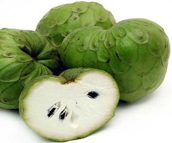 jamaican custard apple - photo #24