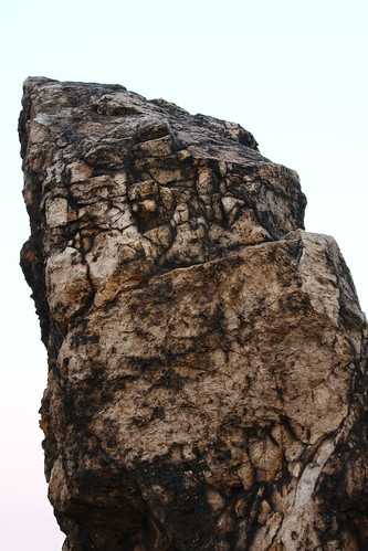 Piranha rock