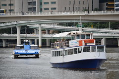 cruise boats
