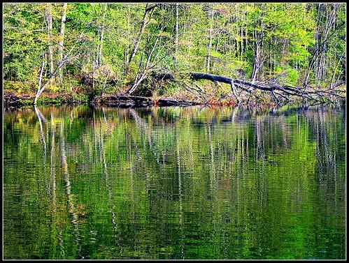 water colors reflections spring va dcist burke burkelake flipmode79