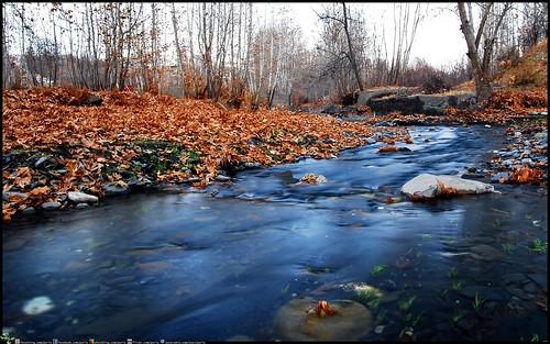 autumn nature river landscape iran mashhad shandiz khorasanrazavi iranmap iranmapcom bizdar