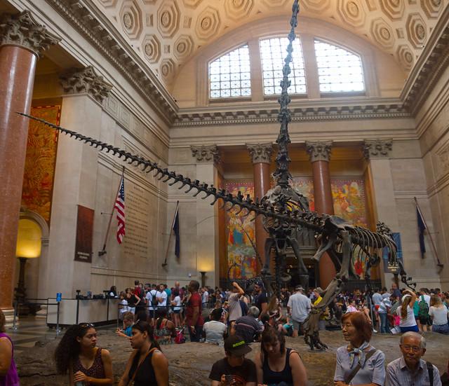 New York Natural History Museum (2016)