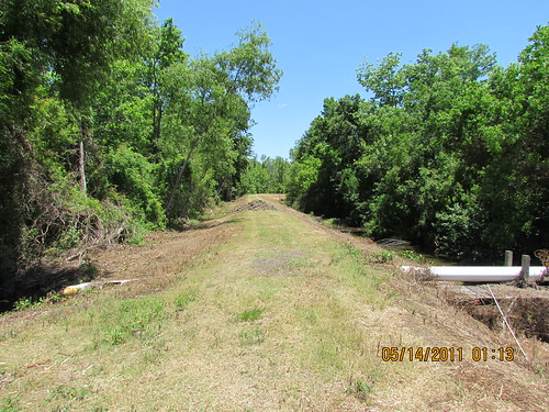 Aristile Rd. Levee, Bayou L'Ourse