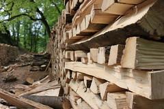 Holz unendlich