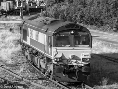 EWS 66167