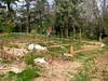 Talley Garden April 2011