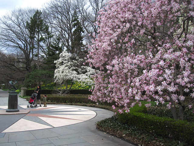 Visitors enjoy Magnolia Plaza in bloom. Photo by Rebecca Bullene.