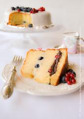 torta bergamotto e cioccolato fondente con mirtilli e ribes rosso (senza lattosio)